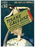 Tisane Gauloise
