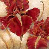 RH-Red Iris - Tile Mural.