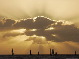 Sunset Sail  Honolulu  Hawaii