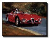 Alfa 1953 3000cm