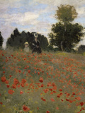 Poppy Field at Argenteuil  c1873