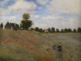 Poppies  c1873