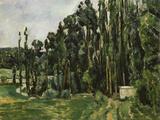 The Poplars  c1879-82