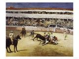 Bullfight  c1865