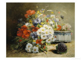Still Life of Cornflowers  Poppies and Violets