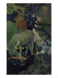The White Horse  c1893