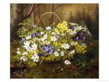 Anemones and Primroses in a Basket
