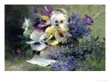 Pansies and Forget-Me-Not