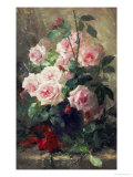 Still Life of Pink Roses