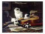 The Musical Cats