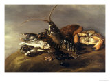 Still Life with Lobster  Crabs  Mussels and Fish