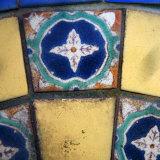 Mediterranean Close Up II
