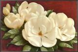 Magnolia Crimson I