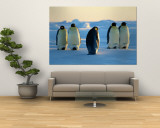 Emperor Penguins on the Frozen Southern Ocean