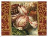 Classic Dutch Tulip