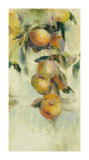 Golden Fruit Study I