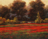 Poppy Meadows II