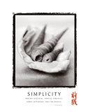 Simplicity: Shells