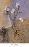 Flowers of June Series I