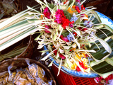 Canang Sari  Traditional Balinese Daily Offering  Ubud  Bali  Indonesia