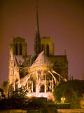 Notre Dame Cathedral Lit at Night  Paris  France