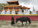 Tibetan Man with Horse in Tagong Monastery  Sichuan  China
