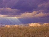 Sun Rays in the Afternoon Storm Clouds  Maasai Mara  Kenya