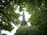 Detail of Eiffel Tower  Paris  France