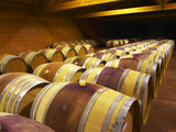 Aging Cellars with Rows of Oak Barrels  Domaine Pierre Gaillard  Malleval  Ardeche  France