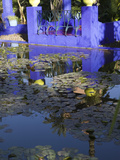 Villa Reflexion  Jardin Majorelle and Museum of Islamic Art  Marrakech  Morocco