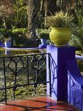Villa Gardens  Jardin Majorelle and Museum of Islamic Art  Marrakech  Morocco