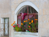 Windows and Flowers in Village  Cappadoccia  Turkey