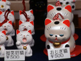 Display of Lucky Cats  Japanese Cultural Icon for Good Fortune  Akasaka  Tokyo  Japan