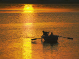 Rowing Boat on Ganges River at Sunset  Varanasi  India