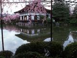 Geishas on the Balcony of Shobi-Kan Teahouse in Garden at Heian Shrine  Kyoto  Japan