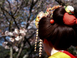 Close-up of Geisha on Philosophers Path  Kyoto  Japan