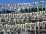 Squids Drying in Coastal Town of Sokch'O  South Korea