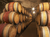 Chapoutier Winery's Barrel Aging Cellar with Oak Casks  Domaine M Chapoutier  Tain L'Hermitage