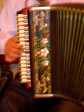 Musician Playing Accordion for Turkish Dancers  Turkey