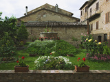 Well and Garden Courtyard  Buonconvento  Italy