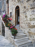 Flower-Lined Stairway  Petroio  Italy