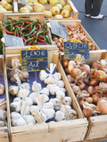 Garlic  Onions and Pimiento Peppers at Market Stall  Bergerac  Dordogne  France