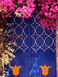 Blue Doors and Bougainvillea  Koskinou Village  Rhodes  Dodecanese Islands  Greece