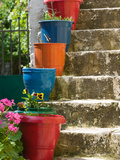 Staircase with Flower Planters  Fiskardo  Kefalonia  Ionian Islands  Greece