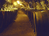 Wine Cellar with Tunnels of Wooden Barrels and Tokaj Wine  Royal Tokaji Wine Company  Mad  Hungary