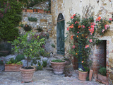Potted Plants Decorate a Patio in Tuscany  Petroio  Italy