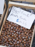 Hazelnut Nuts at a Market Stall  Bergerac  Dordogne  France