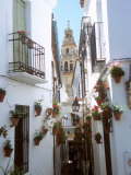 Calleja De Las Flores (Flower Alley)  Spain