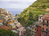 Hillside Village of Manarola  Cinque Terre  Italy