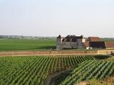Clos De Vougeot  16th Century Monastery and Vineyard  Les Petits Vougeots Vineyard